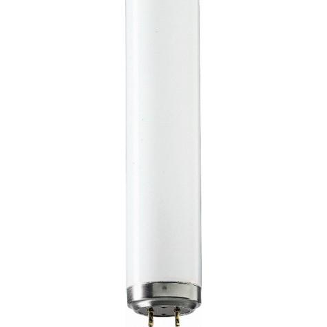 Lampe Actinique BL 20W/10 SLV